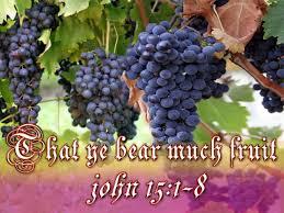 John 15, 1-8a