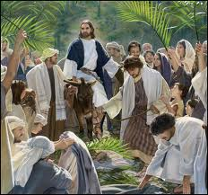 Palm sunday4